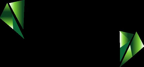 logo-noir-emeraude